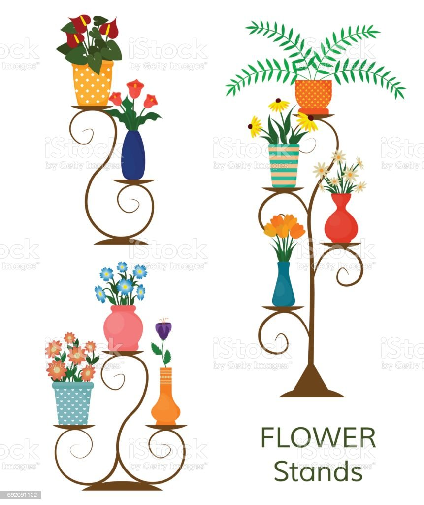 Houseplants Or Indoor Plants And Potted Flowers On Shelves And ...