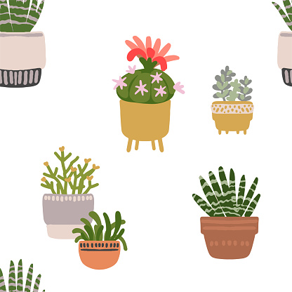 Houseplants pattern. Homemade exotic flowers in pots. Tropical plants in pots.