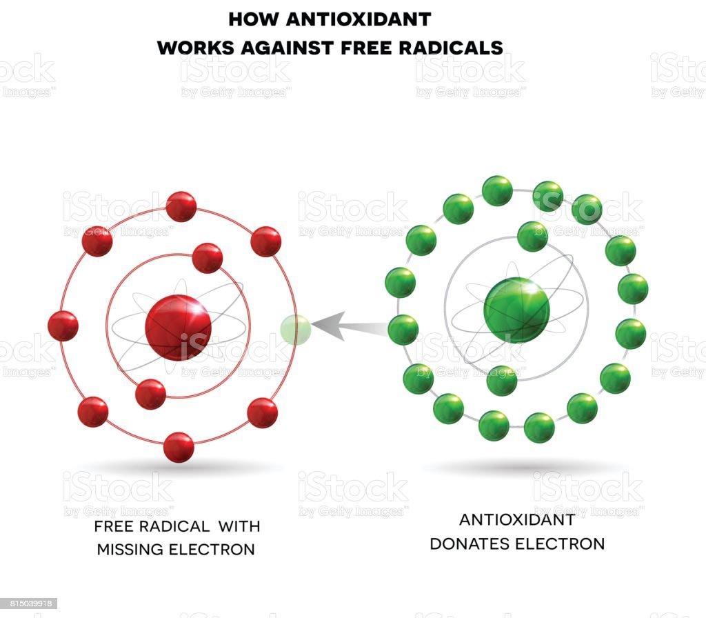 El funcionamiento antioxidante - ilustración de arte vectorial