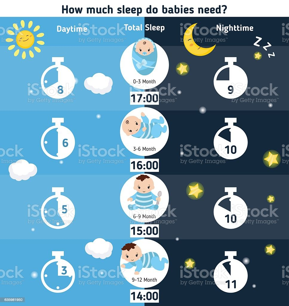 How much sleep do babies need vector art illustration