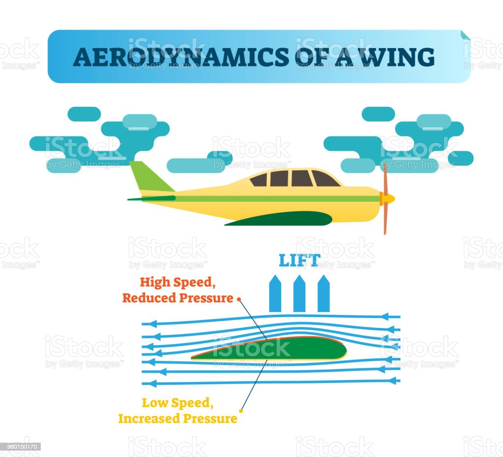 How The Wing Flies Aerodynamics Of A Air Flow Diagram With Wind An Airplane