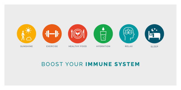 How to boost your immune system naturally How to boost your immune system naturally: expose to sunlight, exercise, eat healthy, drink water, relax and sleep, icons set wellbeing stock illustrations