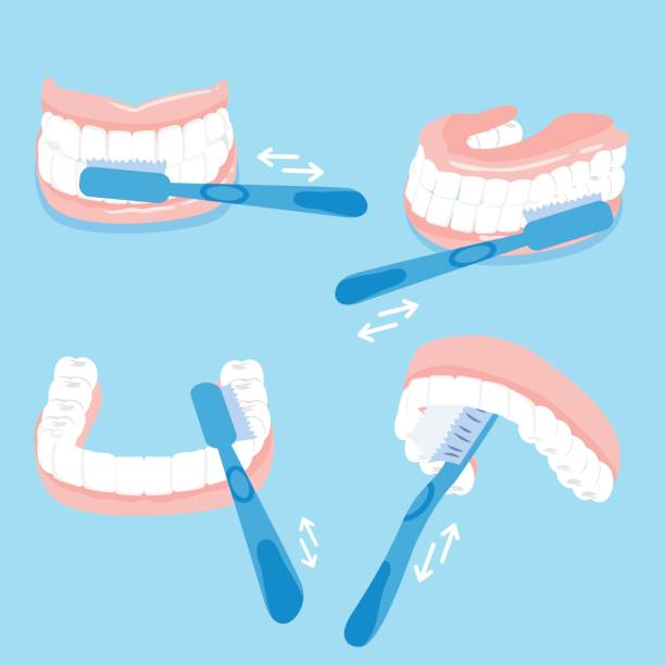 how to brush tooth vector art illustration