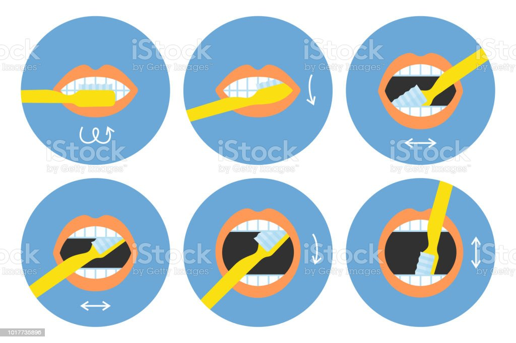 How to brush your teeth instructions 6 steps vector art illustration
