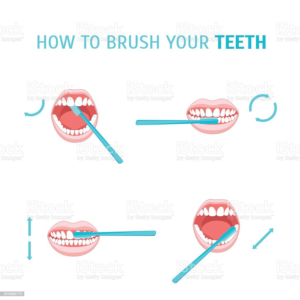 How To Brush Your Teeth. Vector vector art illustration