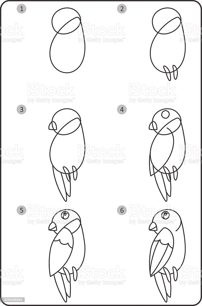 How to draw bird easy drawing bird for children step by step royalty