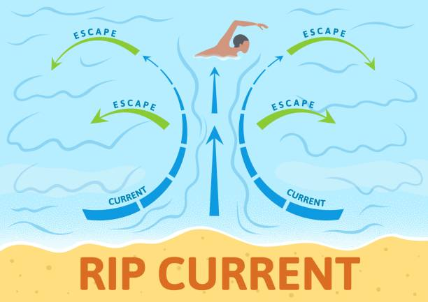 How to escape rip current. Instruction board with scheme and arrows, sign. Colorful flat vector illustration. Horizontal. How to escape rip current. Instruction board with scheme and arrows, outdoor sign. Colorful flat vector illustration. Horizontal. tide stock illustrations