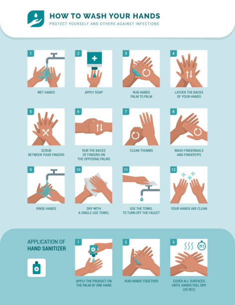 How to wash your hands vector art illustration