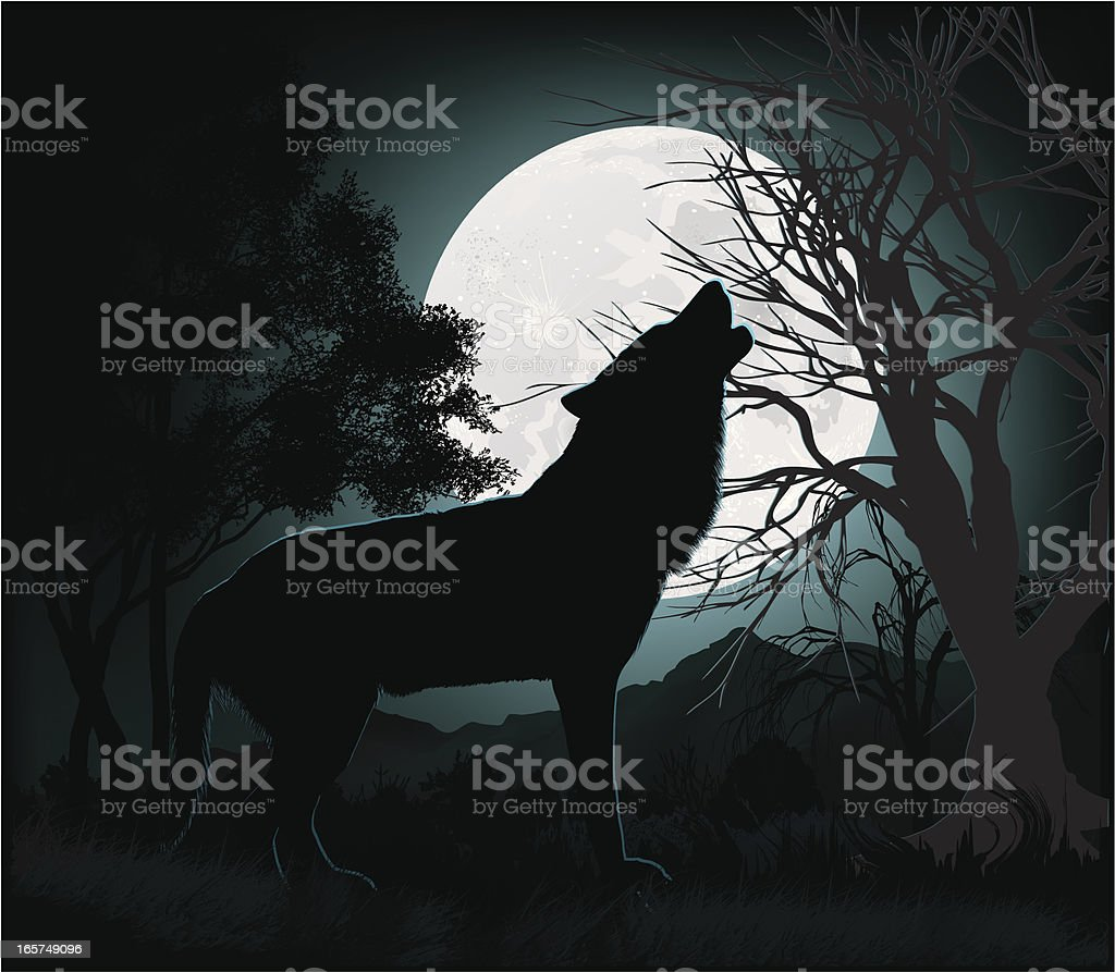 Howling at the Moon vector art illustration