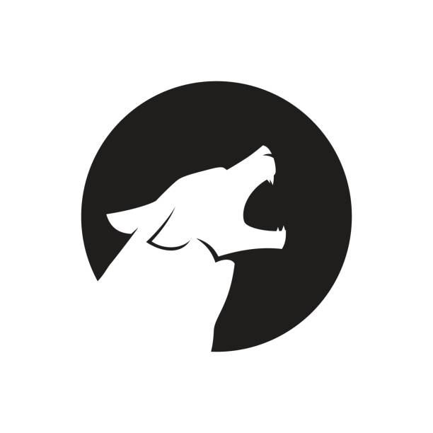Howling wolf head icon or icon in black and white Howling wolf head icon or icon in black and white. Vector illustration. silhouette of a howling coyote stock illustrations