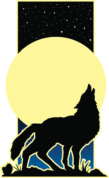 Howling Wolf Simple vector illustraton of a wolf howling at a full moon silhouette of a howling coyote stock illustrations