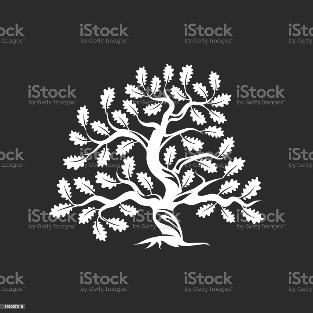 Huge and sacred oak tree silhouette icon badge isolated on dark background vector art illustration
