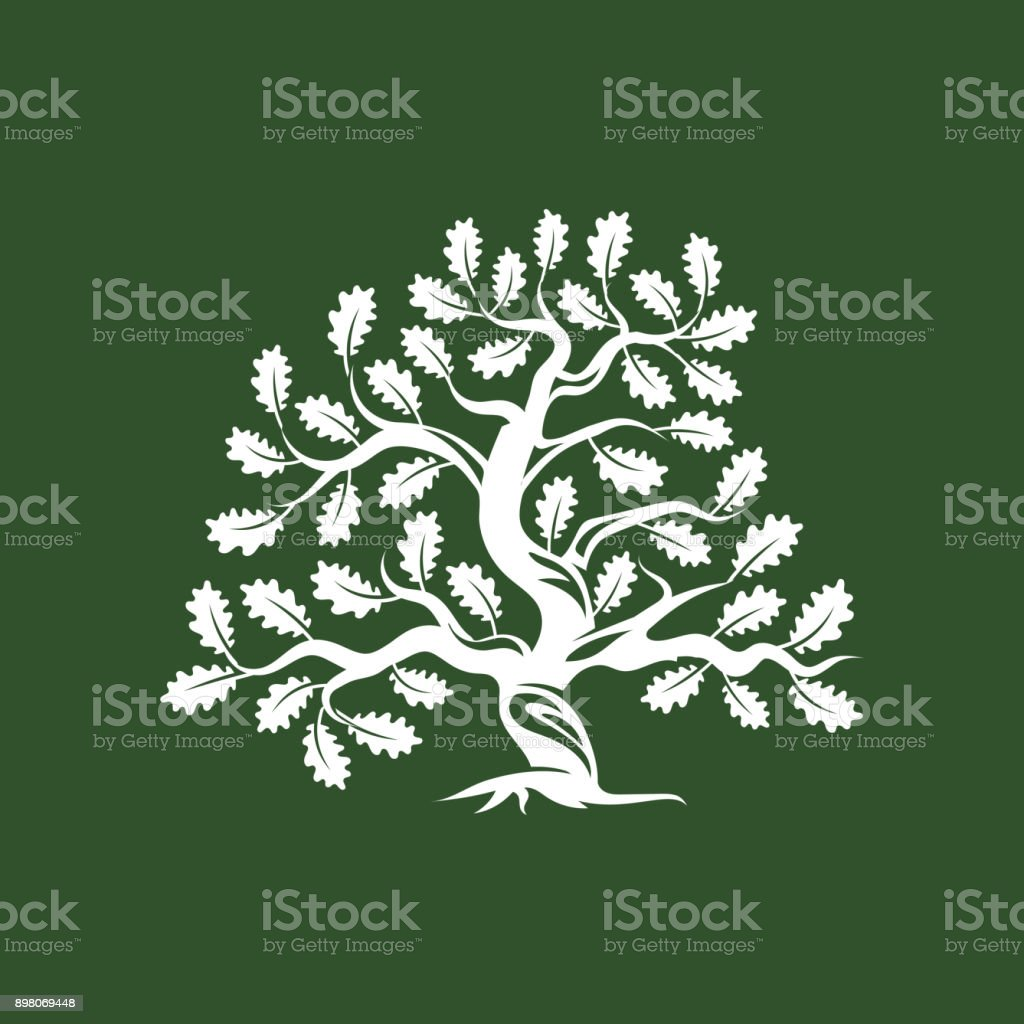 Huge and sacred oak tree silhouette icon badge isolated on green background. vector art illustration