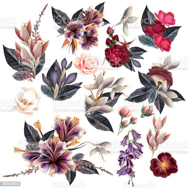 Huge collection of flowers in vintage style vector id900335012?b=1&k=6&m=900335012&s=612x612&h=q5df1wpwmwenbluhq2bzj0lkuwfkfnfvpu1 bwljvba=