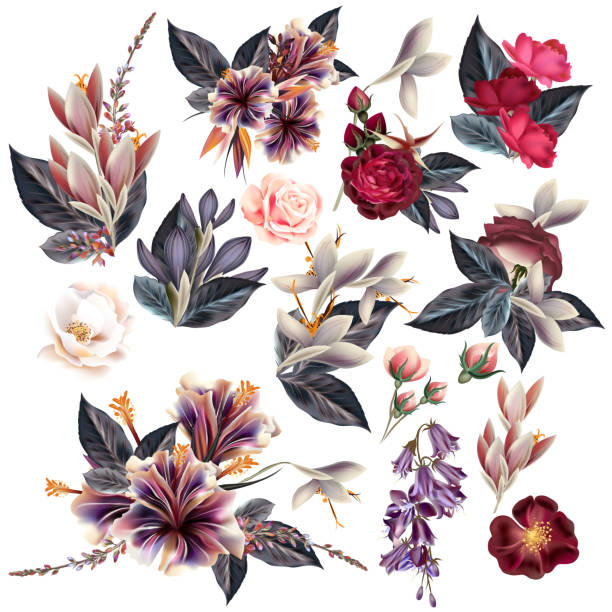 Huge collection of flowers in vintage style Big collection of flowers in vintage style animal valentine stock illustrations