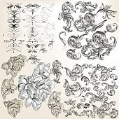 Huge set of vector flourishes, swirls and hand drawn flowers