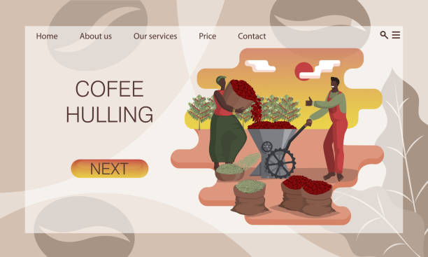 illustrazioni stock, clip art, cartoni animati e icone di tendenza di hulling coffee. black man and woman clean coffee beans in huller. concept of website, landing page design template - coffee farmer