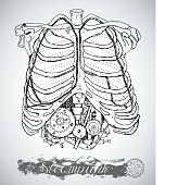 Human anatomy chest with vintage mechanism in ribs. Steam punk style with bones and machine. Hand drawn illustration, sketch tattoo, old black and white science background with lettering