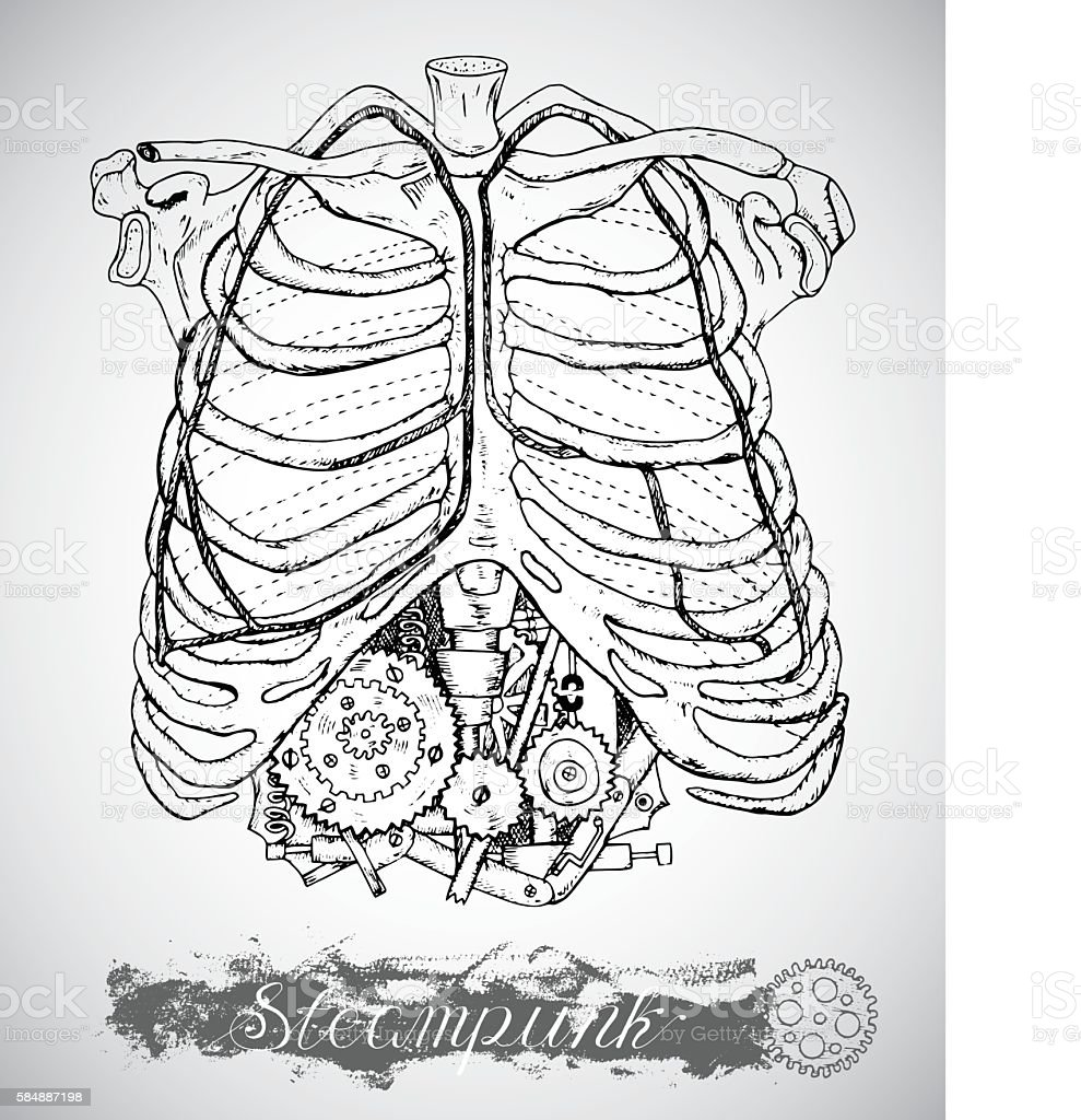 Human anatomy chest with vintage mechanism in ribs vector art illustration