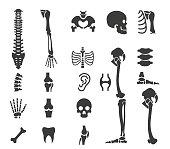 Human anatomy icon set