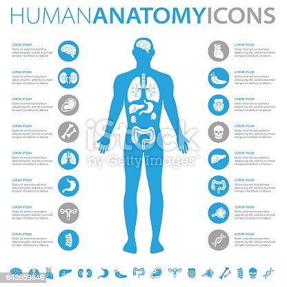 Medical infographics collection, charts, symbols, graphic vector elements
