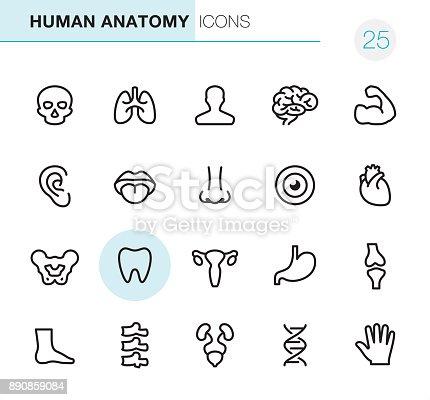 20 Outline Style - Black line - Pixel Perfect Anatomy icons / Set #25