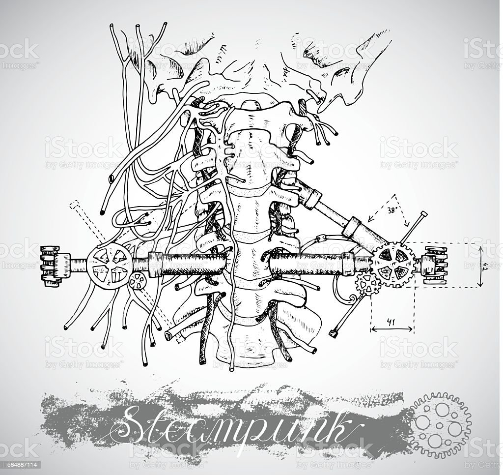 Human Anatomy Throat With Vintage Mechanism In Steampunk Style Stock