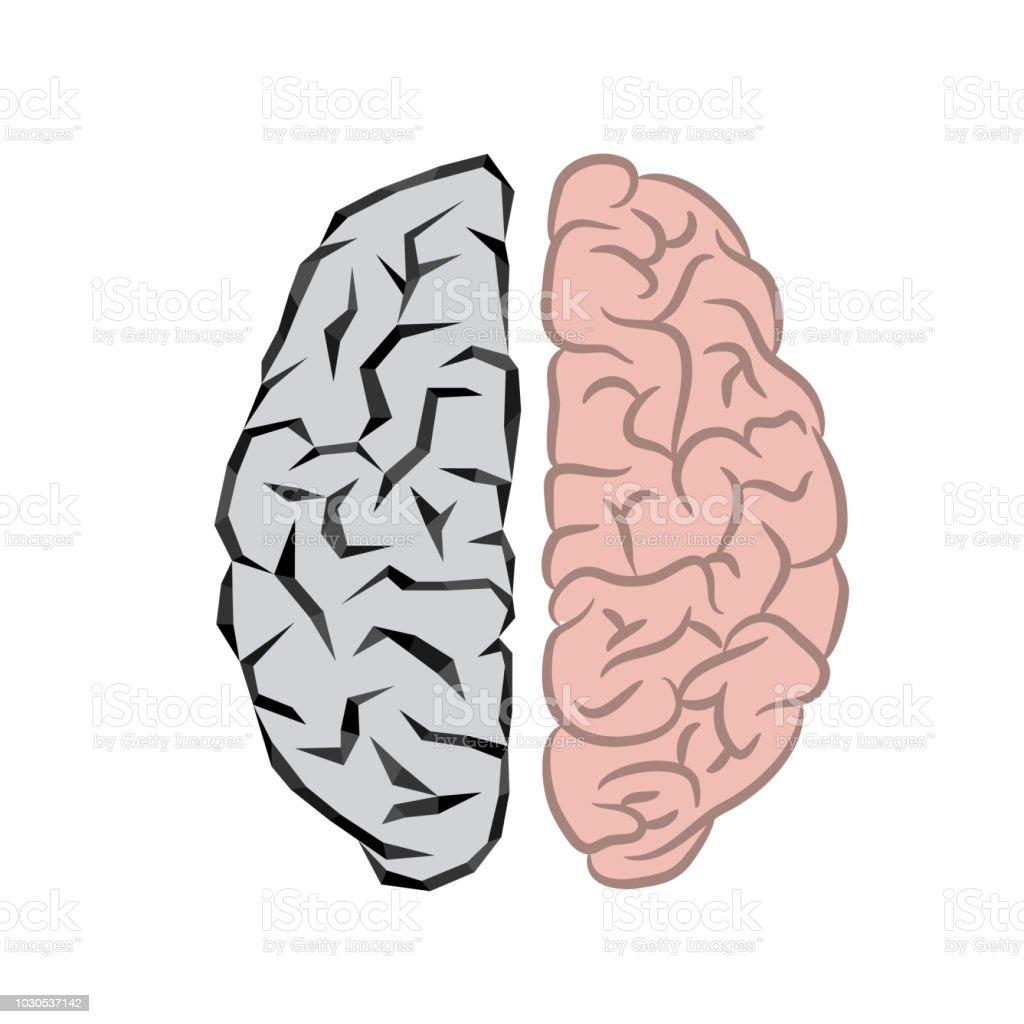 Human and robot brains - illustrazione arte vettoriale