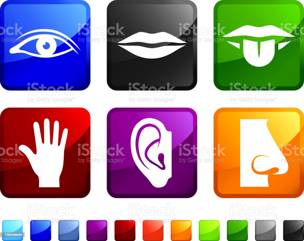 Human Appendages and Senses royalty free vector icon set stickers vector art illustration