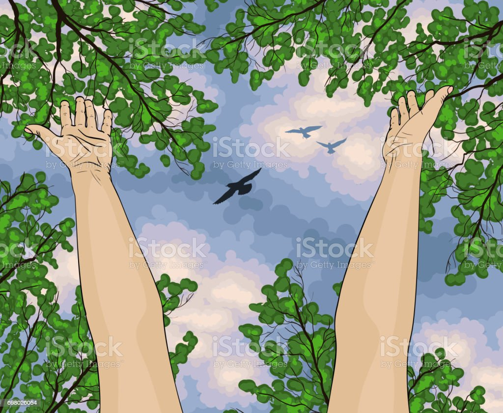 Human arms open upwards, view from below on trees and blue sky vector art illustration