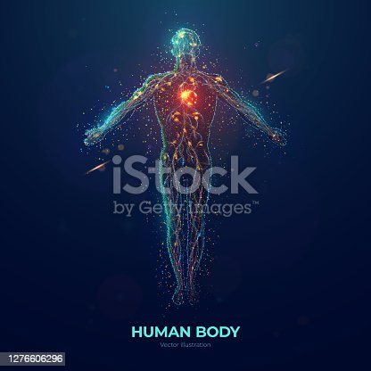 istock Human body abstract particles illustration 1276606296