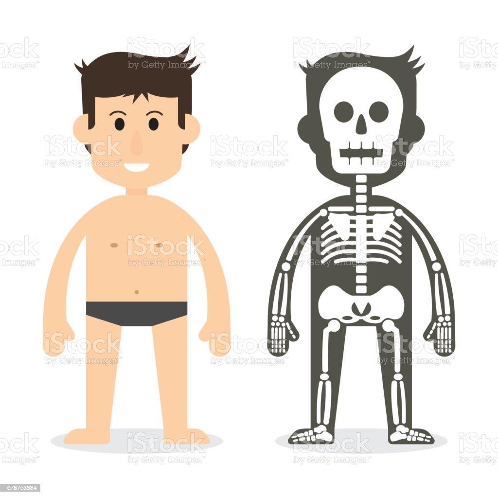 Human Body And Skeletal System Vektor Illustration 678753834 Istock