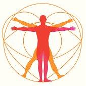 Human Body Design - Illustration