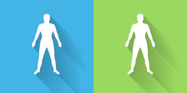 Human Body Icon with Long Shadow Human Body Icon with Long Shadow. The icon is on Blue Green Background with Long Shadow. There are two background color variations included in this file. The icon is rendered in white color and the background is blue or green. There is also a 45 degree long shadow. the human body stock illustrations