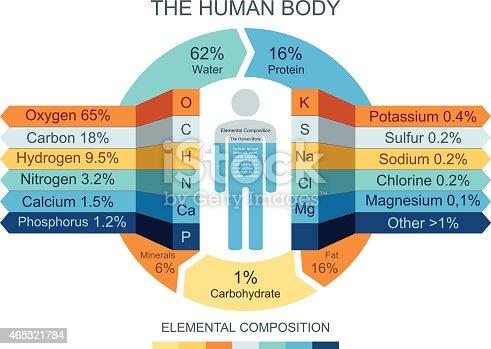 istock Human Body Infographics 465321784
