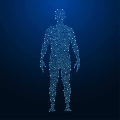 Human body made by points and lines, polygonal low poly wireframe mesh on night sky, dark blue background. Vector