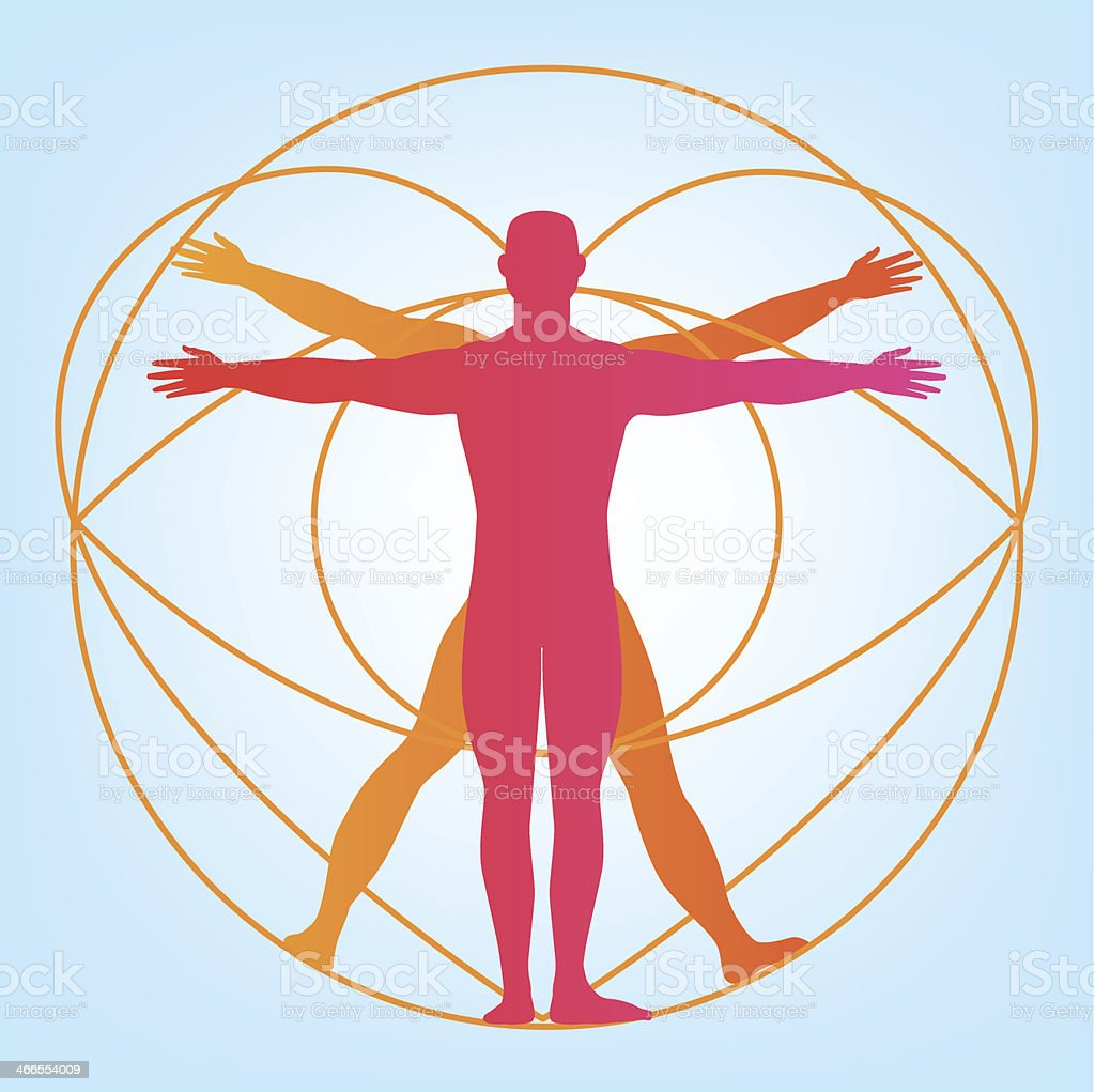 Cuerpo Humano Hombre Anatomía - Arte vectorial de stock y más ...