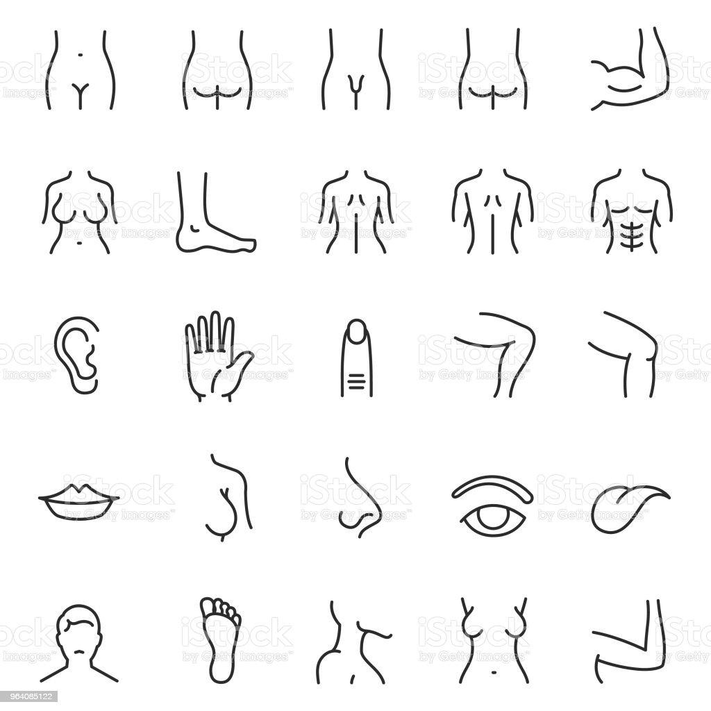 Human body part icon set - Royalty-free Abdomen stock vector