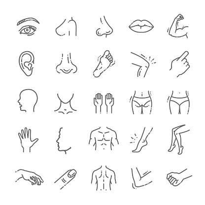 human body parts icons plastic face surgery, medical vector icons