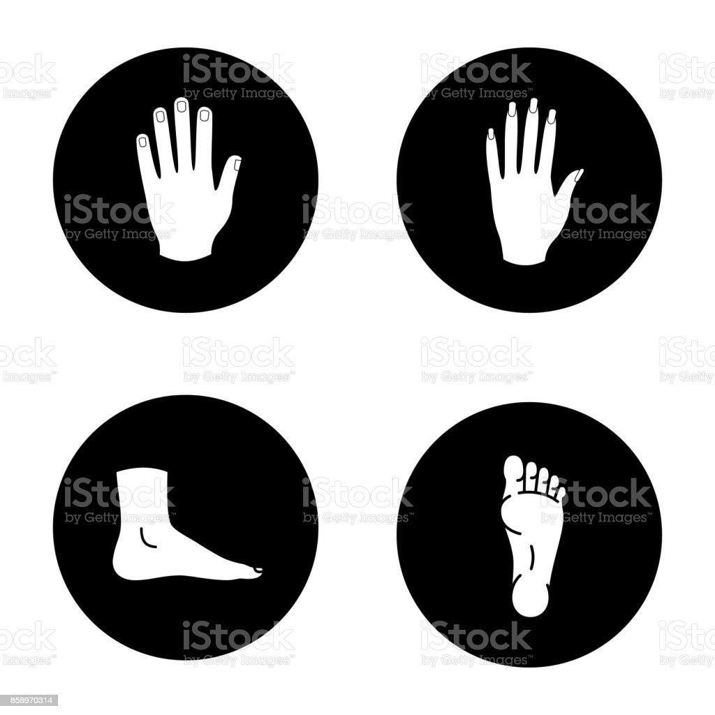 Menschliche Körperteile Symbole Vektor Illustration 858970314 | iStock