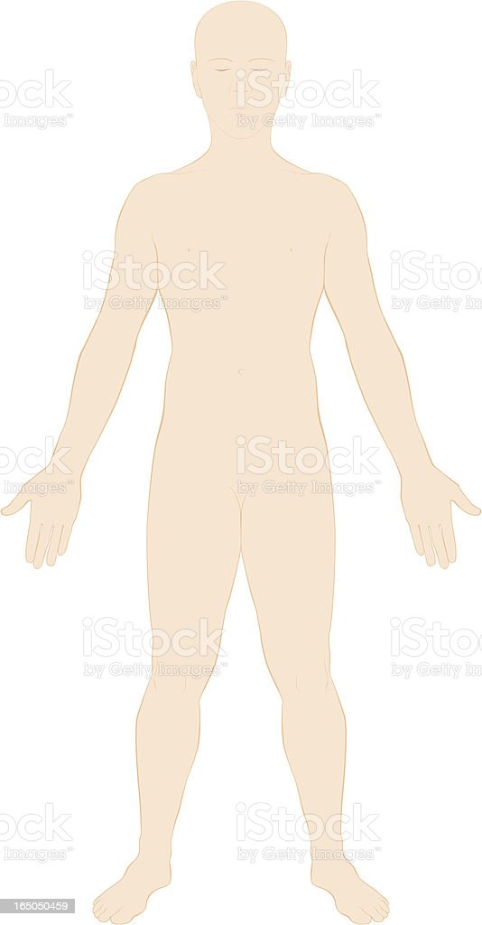 Human Body Surface Anatomy Colour Stock Vector Art & More Images of ...