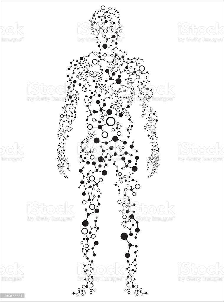 Human body royalty-free stock vector art