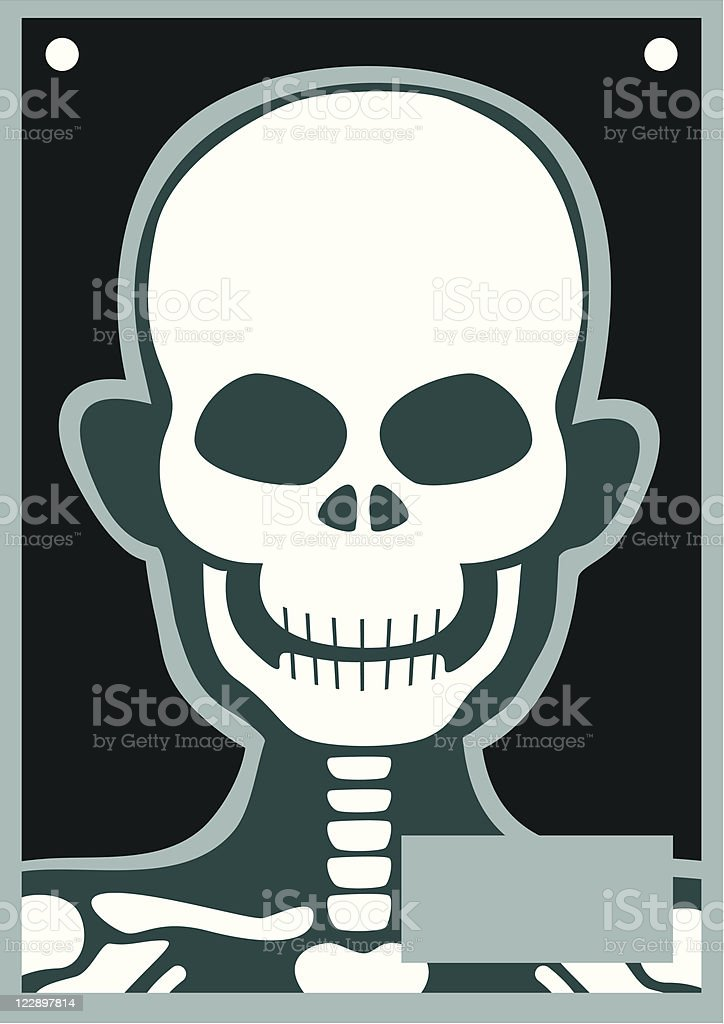 Human Body X Ray Head/Skull royalty-free stock vector art