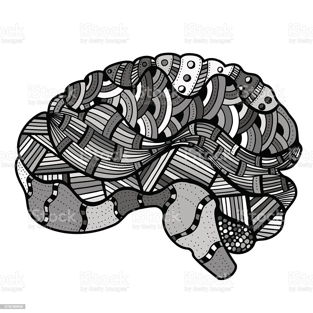 Human Brain Doodle Stock Vector Art & More Images of Abstract ...