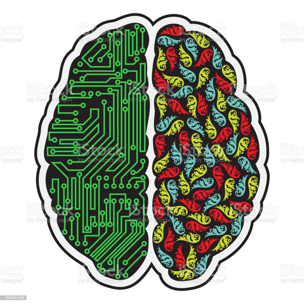 Human brain halves - illustrazione arte vettoriale