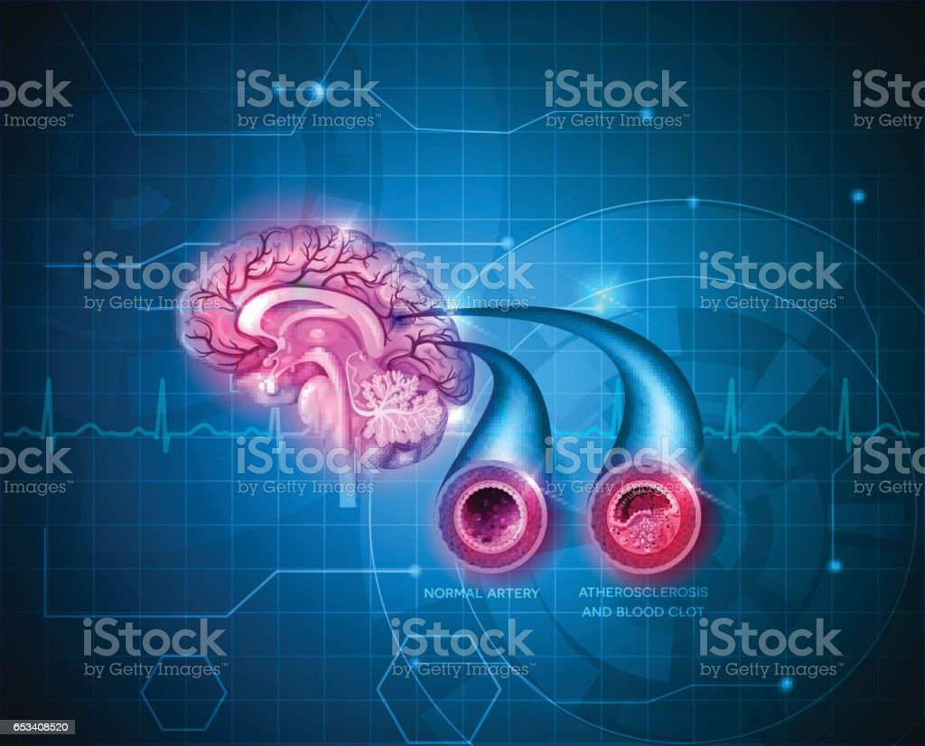 Human brain healt care vector art illustration