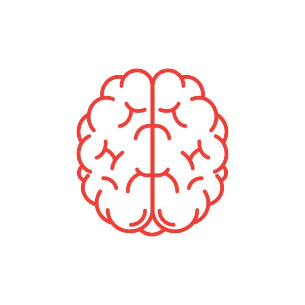 Human Brain Icon Human Brain Icon human nervous system stock illustrations