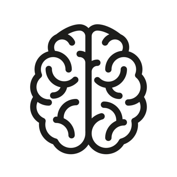 ilustraciones, imágenes clip art, dibujos animados e iconos de stock de icono del cerebro humano - vector - brain