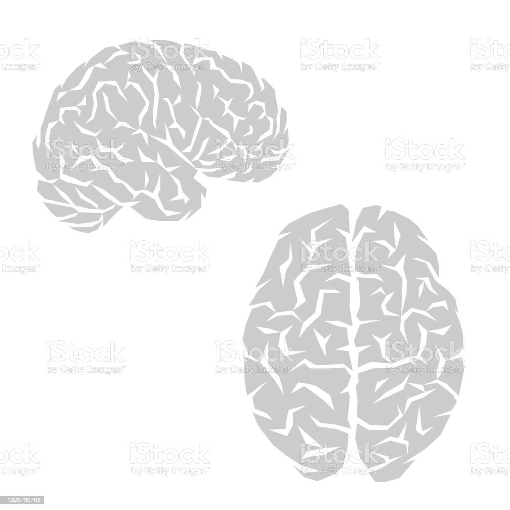 Human brain outline - illustrazione arte vettoriale