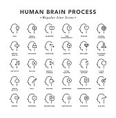 Human Brain Process - Regular Line Icons - Vector EPS 10 File, Pixel Perfect 30 Icons.